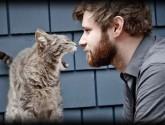 cats_life